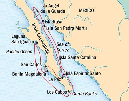 SINGLE Cruise - Balconies-Suites Lindblad National Geographic NG CRUISE Sea Lion March 30 April 13 Ship San Carlos, Mexico to La Paz, Mexico